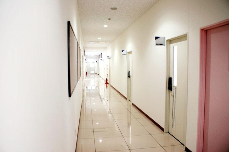 1階廊下写真